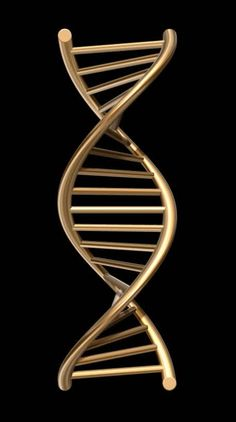 Dna Chain Forensics And Investigations, Iphone Wallpaper Video, Phone Screen Wallpaper, Apple Wallpaper, Cellphone Wallpaper, Black Wallpaper, Galaxy Wallpaper, Globe Wallpaper, 3d Wallpaper Android, Dna Kunst