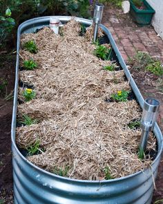 Raised wicking beds are like giant self-watering pots, great for growing vegies. By she cooks, she gardens
