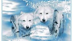 Image result for animals in frost images