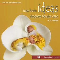 Handle your #ideas carefully before they die unnatural death.