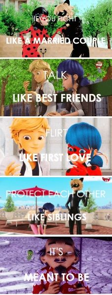 And you know who made that will happen it was master he made you will happen you better be grateful everybody who watches miraculous and whose ships are Adrienette Marichat Ladynoir and ladrienoir/ adribug Miraculous Ladybug Wallpaper, Miraculous Ladybug Fan Art, Lady Bug, Ladybug Und Cat Noir, Foto Gif, Meraculous Ladybug, Satsuriku No Tenshi, Marinette And Adrien, Porno