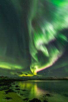 Auroras boreales desde Kvaløya, Noruega – El Universo Hoy
