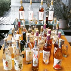 wine wankers piemonte trip piedmont marolo grappa grappe alba