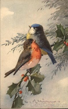 Robin and Blue Bird on Sprig of Holly C. Klein Birds