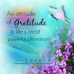 86954d32d48cb4a7685acf003615d756--attitude-of-gratitude-gratitude-quotes.jpg