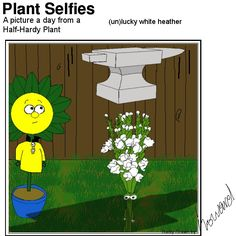 lucky for some maybe! Plant Cartoon, Hardy Plants, Pictures, Character, Photos, Lettering, Grimm