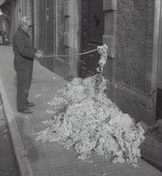 #Colchonero. Antiguamente los colchones más comunes eran lo de lana. La lana de estos colchones se apelmazaba con el uso y era necesario llevarlo al colchonero para que varease la lana, desapelmazándola para poder ser usado el colchón como el primer día. Foto Madrid, Barcelona Catalonia, Alicante, Wanderlust Travel, Old Pictures, Nostalgia, Spain, Old Things, City