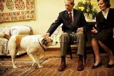 Regele Mihai si Regina Ana( Se întâlnesc toți trei. Ursus a plecat primul.) Descendants, Romania, Edinburgh, King, History, Dogs, Home, Shelf, Historia