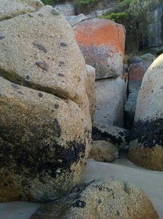 Squeaky Beach Wilson's Promontory Victoria Australia Wilsons Promontory, Victoria Australia, Beach, Photography, Fotografie, Photograph, Seaside, Beaches, Fotografia