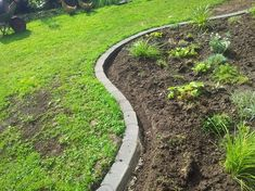 Rasenkantensteine leicht und einfach verlegen / Pflanzbeete – Rasenkanten anlegen | Beamacer