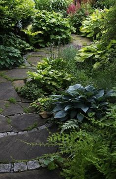 - Jardin Vertical Fachada de jardin japonais jardin japonais - Lilly is Love Forest Garden, Woodland Garden, Path Design, Landscape Design, Design Ideas, Landscaping With Rocks, Backyard Landscaping, Landscaping Ideas, Landscaping Borders