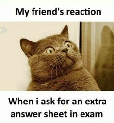 Me after exam results Check out these funny exam memes is part of Exam quotes funny - Todays Topic How to get rid of exam stress Answer Fk this shit and check out these few images which Memes Humor, Funny Minion Memes, Funny School Jokes, Very Funny Jokes, Really Funny Memes, Crazy Funny Memes, School Memes, Funny Relatable Memes, Hilarious Memes