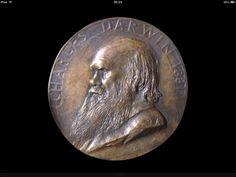 Darwin munt