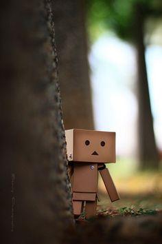 Peekaboo!, via Flickr. 정통바카라타짜바카라✣ ✣  JPJP7.COM ✣ ✣ 해외바카라나인바카라