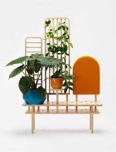 Urban Jungle Bloggers - Studio Dossofiorito #urbanjunglebloggers