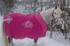 For my baby girl Farm Lifestyle, Equestrian Decor, Horse Accessories, Horse Tack, Show Horses, Horseback Riding, My Baby Girl, Horse Blanket, Horse Stuff