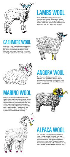 Know your wool Via