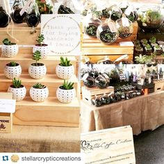 Market stall set up from using our 3 tier display stands in raw line thanks for buying handmade sign & custom Aframe! Market Stall Display, Farmers Market Display, Market Displays, Craft Fair Table, Stand Feria, Succulent Display, Market Stands, Pop Up Market, Craft Markets