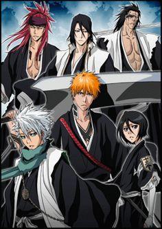 Renji, Byakuya, Kenpachi, Toshiro, Ichigo and Rukia