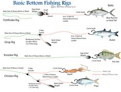 fishing rig diagrams | First - There are two basic kinds of bottom rigs – rigs that have ...