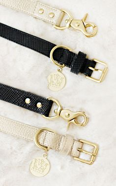 Luxe Collars and Leads from WOOF New York