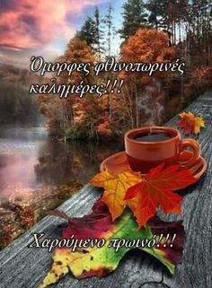 Good Night, Good Morning, Good Vibes, Birthday Wishes, Autumn, Cookies, Photos, Nighty Night, Buen Dia
