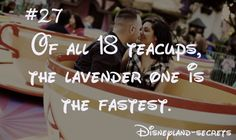 Which Disneyland tea cup spins the fastest? The lavender teacup spins the fastest at the Mad Tea Cups in Disneyland.