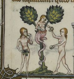 Adam and Eve Illumination Medieval Manuscript, Medieval Art, Illuminated Manuscript, Medieval Paintings, European Paintings, Bonnet Phrygien, Adam Et Eve, The Falling Man, Creation Myth