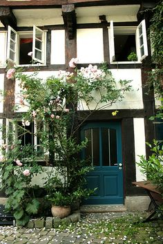 Morning airing and rose petaled  courtyard in Detmold, Germany.
