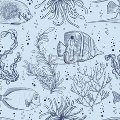 tropical fish: Seamless pattern with tropical fish, marine plants and algae.  Vintage hand drawn illustration marine life.  Design for summer beach, decor, print, fill pattern, web background surface Vector