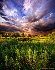 """Wisconsin Ventures"" Horizons by Phil Koch. Milwaukee, Wisconsin, USA. http://phil-koch.artistwebsites.com/"