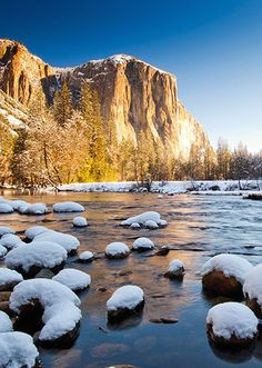 Discover and save on of great deals at nearby restaurants, spas, things to do, shopping, travel and more. Yosemite National Park, National Parks, Outdoor Adventures, Canoe, The Great Outdoors, Places To Go, Things To Do, Hiking, Camping