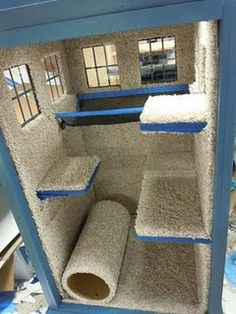 Mister if we build you this will you stop tearing up the carpet and scratching the walls and doors? PLEASE????