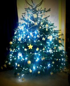 Thanks to @griffinsuzie on Twitter for this entry to our #ClaphamTree competition! :)