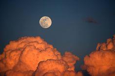 Maxfield Parrish moon