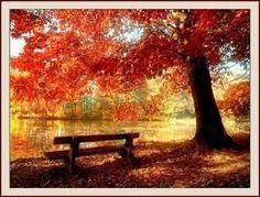 az őszi kép :D