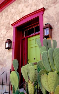 Cactus and colourful doorway - love these colours.