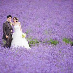 #photoby_mihara  #ハートのある写真 #生きる写真 #wedding #weddingphoto #weddingdress #prewedding #laviefactory #sapporo #photo #結婚式 #写真 #フォトウェディング #ロケーション #ウェディング #プレ花嫁 #前撮り #札幌 #北海道 #ラヴィファクトリー