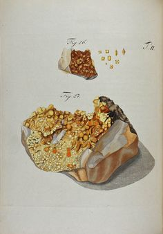 Wulfen, Franz Xavier (1791) Crystal Illustration, Antique Illustration, Science Art, Science And Nature, Collage Drawing, Mineralogy, Rocks And Gems, History Museum, Rocks And Minerals