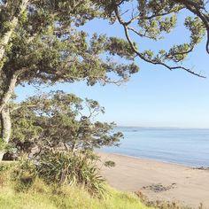 Beautiful #autumn mornings in #newzealand #freshstart #goodmorning #madefromscratch