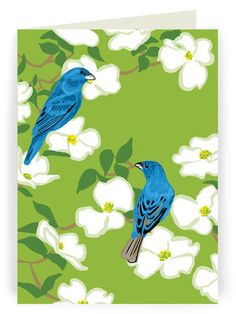 Artwork of Rigel Stuhmiller, printmaker and illustrator based in Berkeley, California Bird Pictures, Folded Cards, Printmaking, Watercolor, Illustration, Artwork, Painting, Animals, Flowers