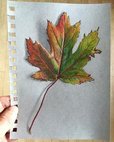 Color Pencil Drawing Tutorial Maple leaf in colored pencil. Realistic Pencil Drawings, Pencil Drawing Tutorials, Easy Drawings, Drawing Tips, Drawing Ideas, Maple Leaf Drawing, Autumn Leaf Color, Colored Pencil Techniques, Leaf Coloring