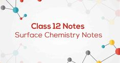 P – Block Elements Class 12 Notes Surface Chemistry Notes, Chemistry Class 12, Chemical Kinetics, Surface Note, 5th Class, Board Exam, How To Make Notes, Study Notes, Students