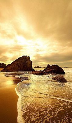 [ Closed ] Harper// I finish one side of the sand castle, poking a small indent with my finger to make a window. I chuckle a bit and go down to the edge of the water, bringing my bucket along. Someone comes down with me.