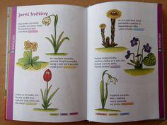 Preschool Worksheets, Montessori, Poems, Jar, Education, Learning, Hand Embroidery, Biology, Poetry