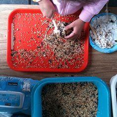 Met een dennenappel en pindakaas maak je een fijne vogel-eetplek.