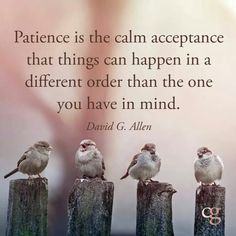Patience is the calm acceptance that things can happen in a different order than the one you have in mind.  #patience