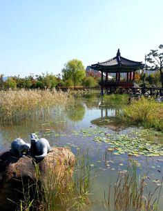 Beautiful fall colors in Daejeon, Korea Daejeon, South Korea Travel, Asia Travel, Cities In Korea, Living In Korea, Visit Thailand, Thinking Day, Seoul Korea, Beautiful World