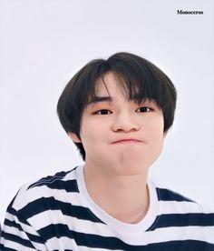 Baby Dolphins, Nct Chenle, Dream Boyfriend, Nct Yuta, Drama Korea, Kokoro, Winwin, Kittens Cutest, Boyfriend Material