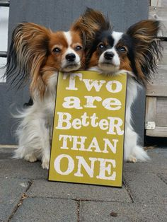 """funny, """"two are better than one"""" is the lesson my kids are learning in children's church this week!"""